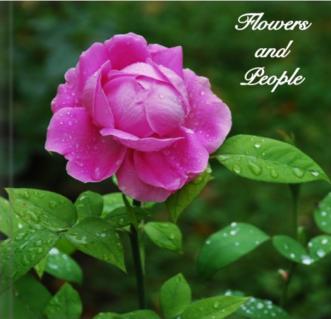 flowerspeople